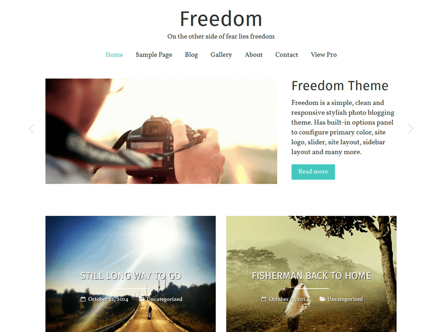 Freedom theme para blog profesional