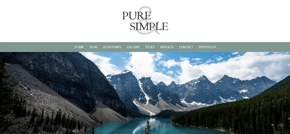 Theme Pure and Simple