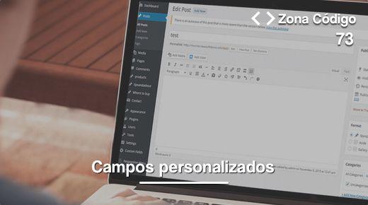 73. Cómo usar campos personalizados en WordPress